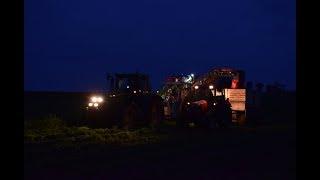 Sklizeň mrkve 2017 | Carrot harvest | John Deere, Zetor, ASA LIFT