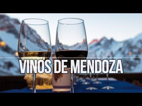 Ruta de los Vinos y Alta Montaña en Mendoza