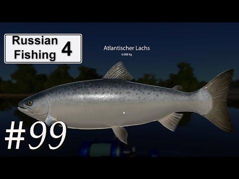 Russian Fishing 4 #99 | Lachse am Großen Strom bei der Polizeistation | Deutsch