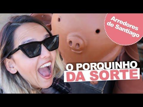 ARREDORES DE SANTIAGO: POMAIRE + ISLA NEGRA (CASA PABLO NERUDA) + ALGARROBO | Prefiro Viajar