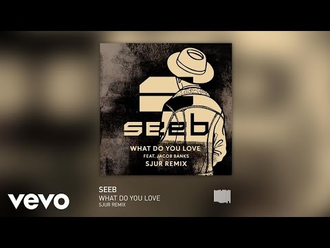 Seeb - What Do You Love SJUR Remix ft. Jacob Banks