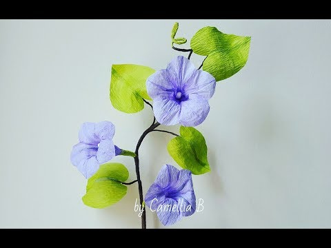 Crepe paper flower, How to make Paper Morning Glory Ipomoea Flowers from crepe paper
