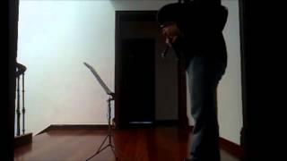 "Giga Allegro da Sonata I para Gaita de fol e continuo de ""Il Pastor Fido"" (op.13) Chédeville"