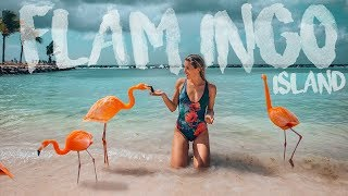 FLAMINGO ISLAND IN ARUBA (Is It Worth The Hype? Know This Before You Go!)