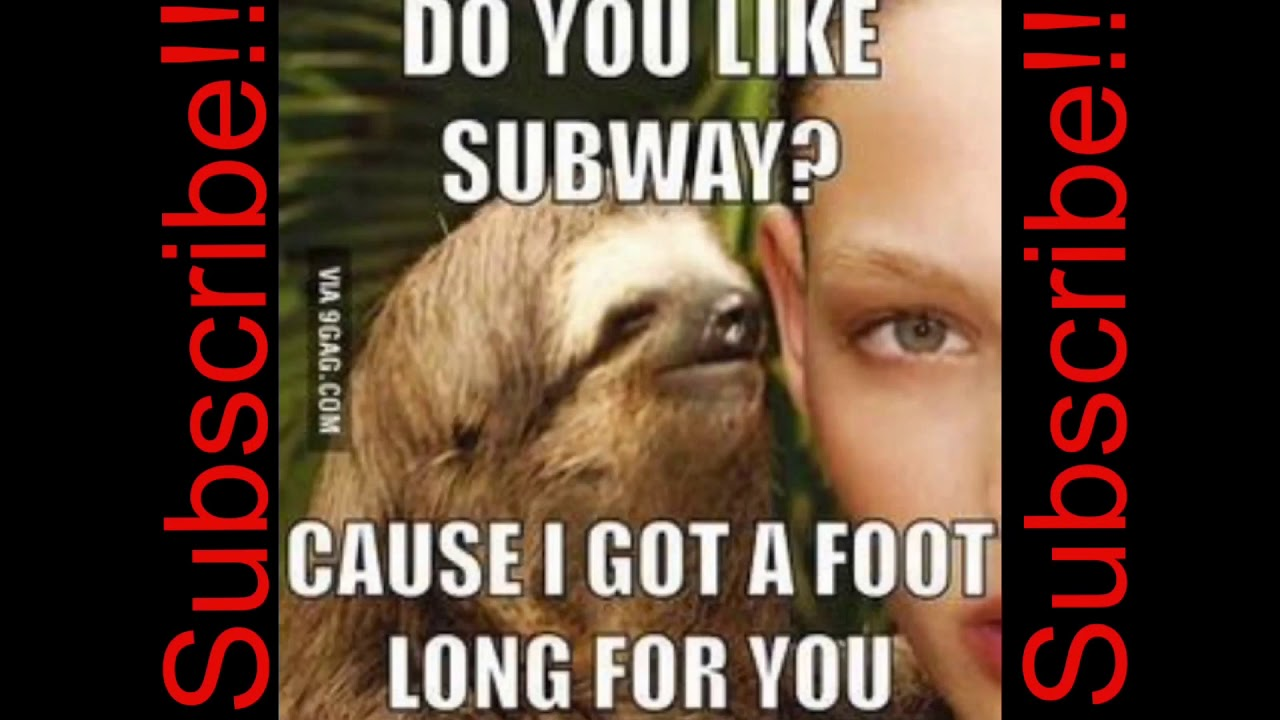best dirty sloth memes ever youtube