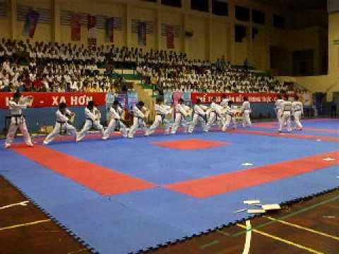 Màn biểu diễn Taekwondo của VĐV Hàn Quốc lúc 19h00 ngày 25/08/2009 tại Bình Thuận
