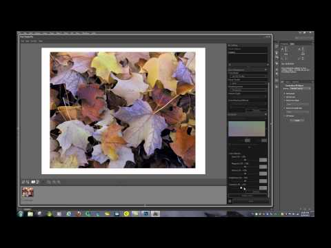How to Print Photos on the Canon Pixma PRO-100 from various Sources