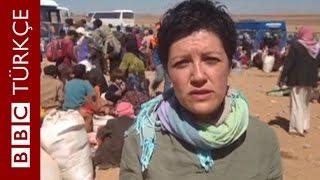 Türkiye Suriye sınırında son durum - BBC TÜRKÇE