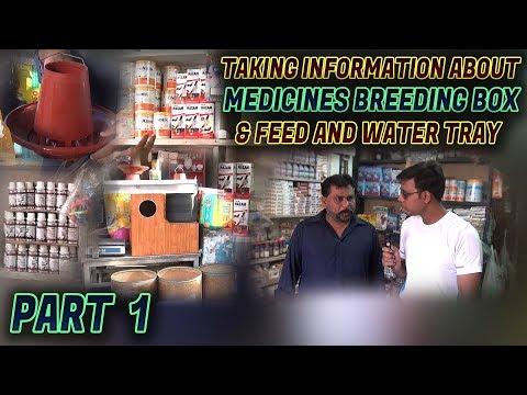 Information About Birds Medicine Breeding Box Foods & Feed Water tray In Urdu/Hindi