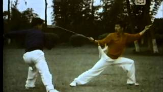 Classic Straight Sword Sparring Set Wushu Demonstration (对刺剑)