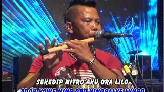 Video Eny Sagita - Pantai Klayar Album Kompilasi (Official Musik Video) download MP3, 3GP, MP4, WEBM, AVI, FLV Oktober 2017