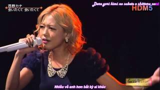 Gambar cover [Vietsub] Aitakute Aitakute Live 2013.9.23 - Nishino Kana