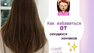 Смотреть видео  если длинные волосы сикуться по всей длине в домашних условиях