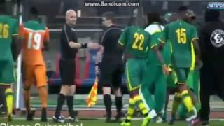 فيديو وصور| شغب كبير في ملعب كوت ديفوار والسنغال