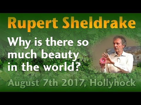 Rupert Sheldrake: Why is there so much beauty in the world?