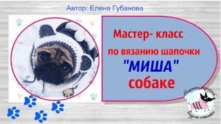 """Мастер-класс по вязанию шапочки """"Миша"""" собаке"""