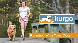 Video Tips for Running with Your Dog download MP3, 3GP, MP4, WEBM, AVI, FLV November 2017