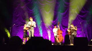 "Nickel Creek: ""Elephant in the Corn"" (Ann Arbor, 7/12/14)"