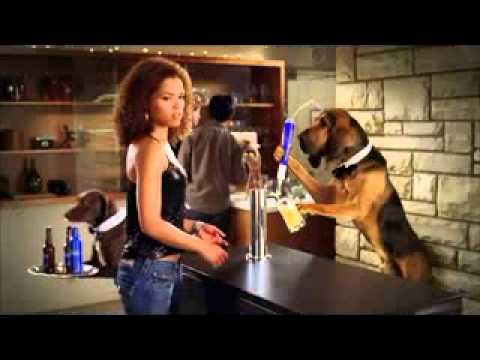 Bud Light Commercial Dog Gets Beer