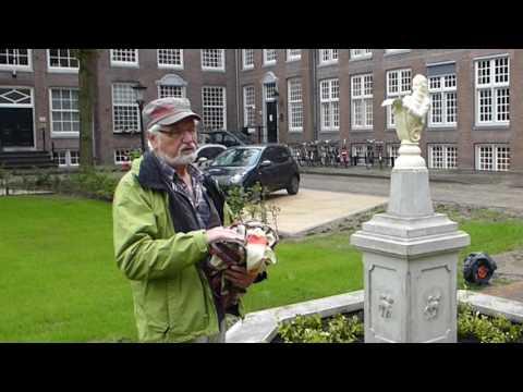 Han van den Bosch