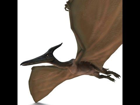 Quetzalcoatlus | Enciclopedia sobre Dinosaurios