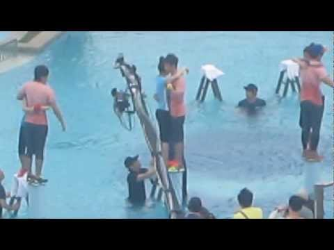 [fancam] SHINee Minho- Dream team in VietNam 130319 - Playing...