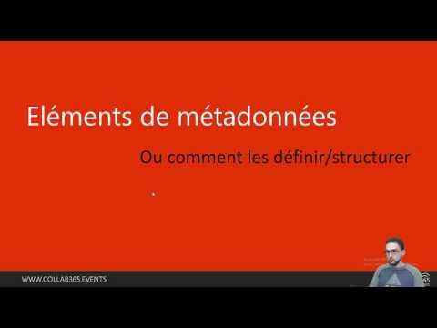 #collab365 - L'importance des métadonnées pour votre entreprise
