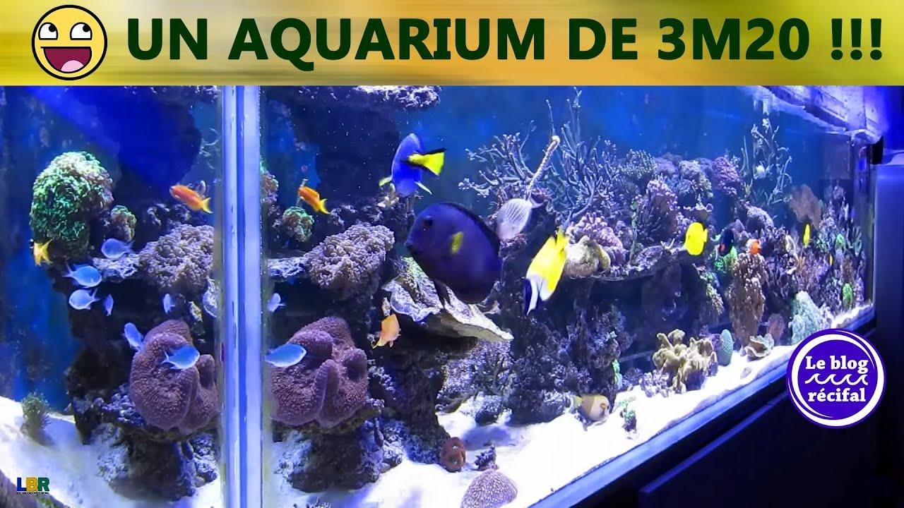 aquarium r 233 cifal 2300 litres
