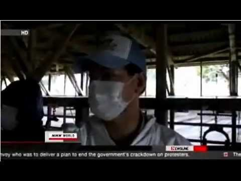 NE Japan Fukushima prefecture -attempts at decontamination & unwillingness to deal w/reality