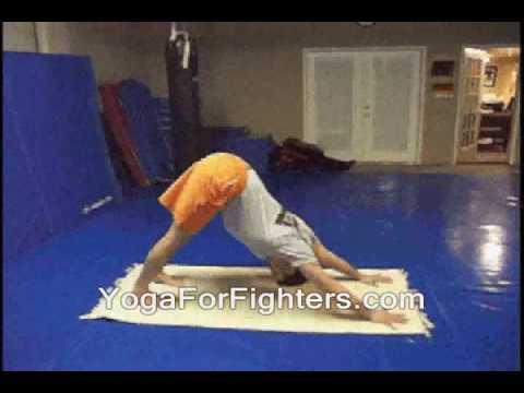 Yoga For Fighters:  Yoga for Gracie Brazilian Jiu-Jitsu (BJJ) and Mixed Martial Arts : Gracie Jiu-Jitsu (Yoga Poses, Breathing and Stretches)
