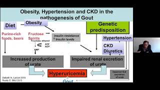 Pascal Richette || Gout & Comorbidities