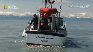 Fish Wars In Alaska : Amazing Documentary