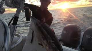 Good times on the Luck Dragon - Cape Horn 24xs