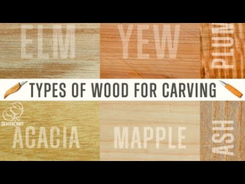 Best Wood for Carving - Easy Wood Carving for Beginners