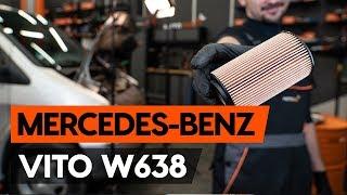Como substituir a filtro de óleo e óleo do motor no MERCEDES-BENZ VITO 1 (W638) [TUTORIAL AUTODOC]