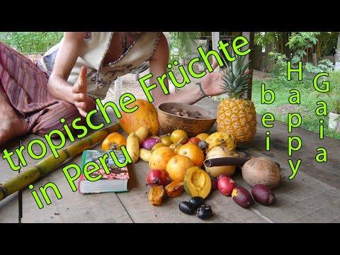 tropische Früchte in Peru à Happy Gaia