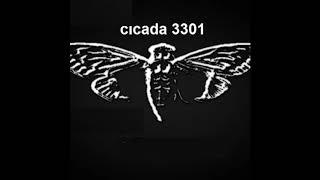 cicada 3301 the music