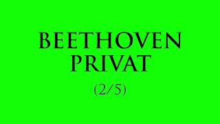 Beethoven privat (ep. 2)