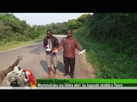 Uganda Zzaabu: Ebibira by'e Tooro