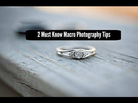 2 Must Know Macro Photography Tips For Razor Sharp Images