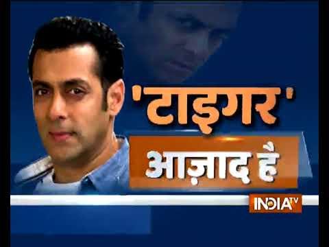 Blackbuck poaching case: Salman Khan released from Jodhpur jail after bail