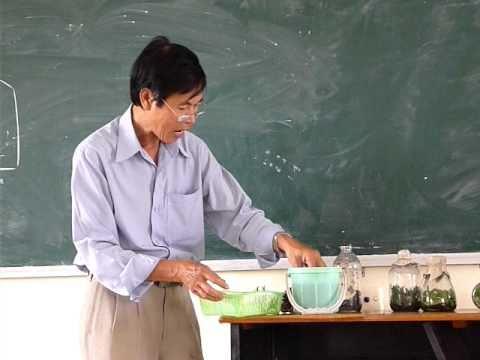 Kỹ thuật trồng lan con 02.MOV