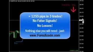 Forex X Code Software Indicator   Avoid Almost 100% Of False Signals