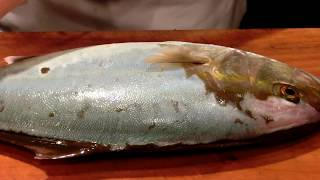 《かんぱち(55cm)を万能包丁で捌く》・・・・大和の 和の料理《魚の捌き方》