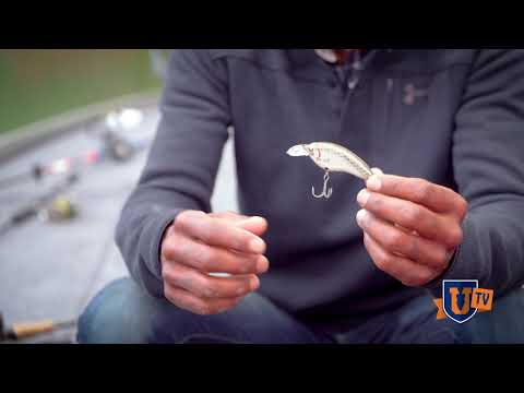 SECRET Largemouth BASS Crankbait Fishing Lure Tips