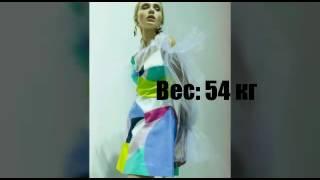 Даша Майстренко биография