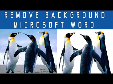 HOW TO REMOVE DELETE AN IMAGE, PICTURE BACKGROUND IN MICROSOFT WORD TUTORIAL