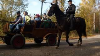 HUBERTUS PLESZEW - TACZANÓW 2015