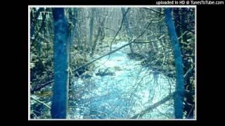 Springtime stream