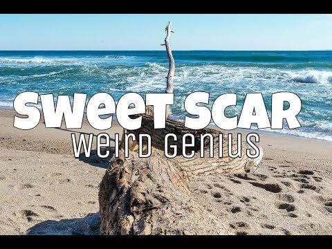 Weird Genius feat. Prince Husein - Sweet scar (Lyric Video)
